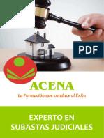 Experto_Subastas_Judiciales