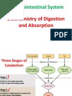 VBC ( Biochemistry of Digestive Disorders )