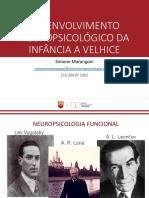 desenvolvimento neuropsicológico