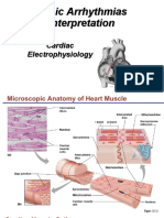 Basic Electrophysiology Copy