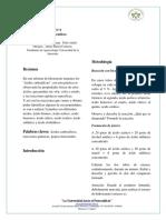 Informe de Química. Acidos