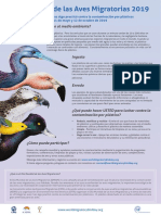 Dia Mundial de Aves Migratorias