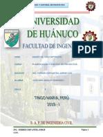 Plani Informe Final