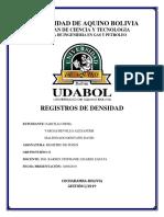 Registro de Densidad