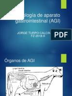 Patologia Gastrointestinal 18 2 (1)