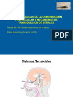 Bioquímica Sensorial II
