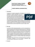 proyecto micro empresa.docx