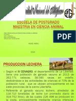 Produccion Lechera La Libretad
