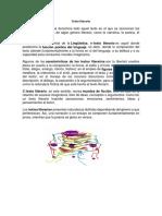 Texto literario.docx