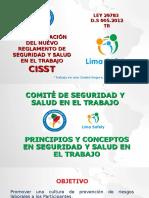 Comite de Seguridad y Salud en el Trabajo. (congreso)-1.ppt