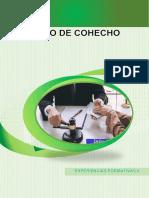DELITO DE COHECHO.docx