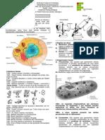 1-Introdução à citologia.pdf