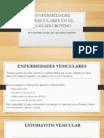 ENFERMEDADES VESICULARES