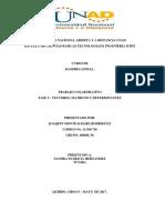 Fase 2 - Vectores, Matrices y Determinantes (2) - copia.docx