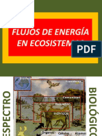 CLASE 2. Flujos de Energia en Ecosistemas, Interacciones