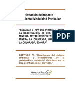 Cap IV Fnal.pdf