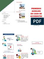 Primeros Auxilios en Caso de Accidentes