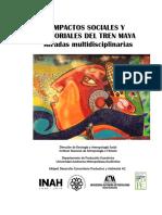 Los impactos del Tren Maya