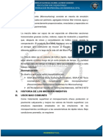 Formato de Encabezado y Pie de Pagina