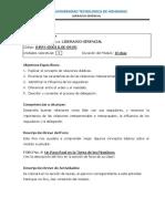 Modulo 8 y 9 Liderazgo Gerencial