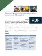 Determinacion de Los Riesgos y Oportunidades de Las Cuestiones Internas y Externas (1)