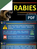 Presentasi Rabies