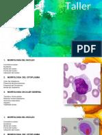 Informe 1 Hematologia (1)