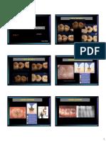 Aula3-_fisiopatologia