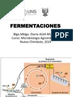 Fermentaciones Microbiologia