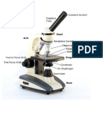 Science Process Skills - Microscope