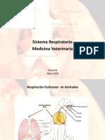 Medicina Veterinaria y Respiración Animal