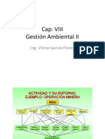 CAP VIII Gestion Ambiental II