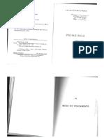 Pioneiros - Cap IV - Inicio Povoamento