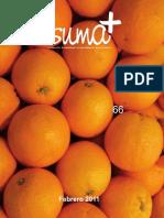 66_Suma.pdf