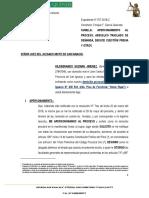 CONTESTA DEMANDA DE NULIDAD DE ACTO JURÍDICO Y DEDUCE CUESTIÓN PREVIA.docx
