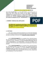 DEMANDA VLGPERU.docx