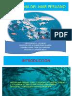 ECOSISTEMA_DEL_MAR_PERUANO.pptx