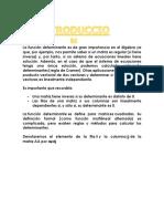 La función determinante es de gran importancia en el álgebra ya que.docx