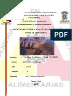 9vo Informe de Laboratorio de Enologia Vinificacion y Ficha de Control Trabajo Terminado