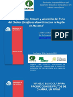 Manejo-y-Valoracion-Chañar.pdf