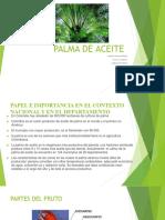PALMA DE ACEITE[189].pptx