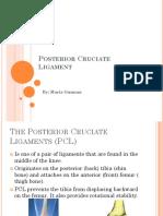 Posterior Cruciate Ligament[1]
