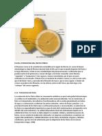 aceite de limon.docx