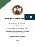 TesisSalvadorAznar.pdf