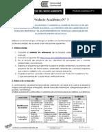 Producto Académico N3.docx