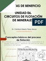 06. PB. Flotación de Minerales