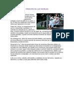 PRINCIPE DE LAS MAREAS.docx