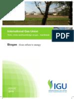 IGU Biogas Report 2015