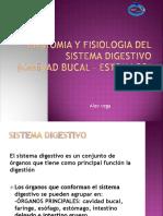 manejostresslaboral-120104005205-phpapp02