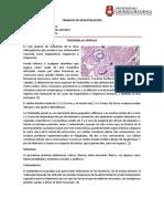 TRABAJO DE INVESTIGACIÓN - MICROBIOLOGÍA - VALERIA CAJAMARCA.docx